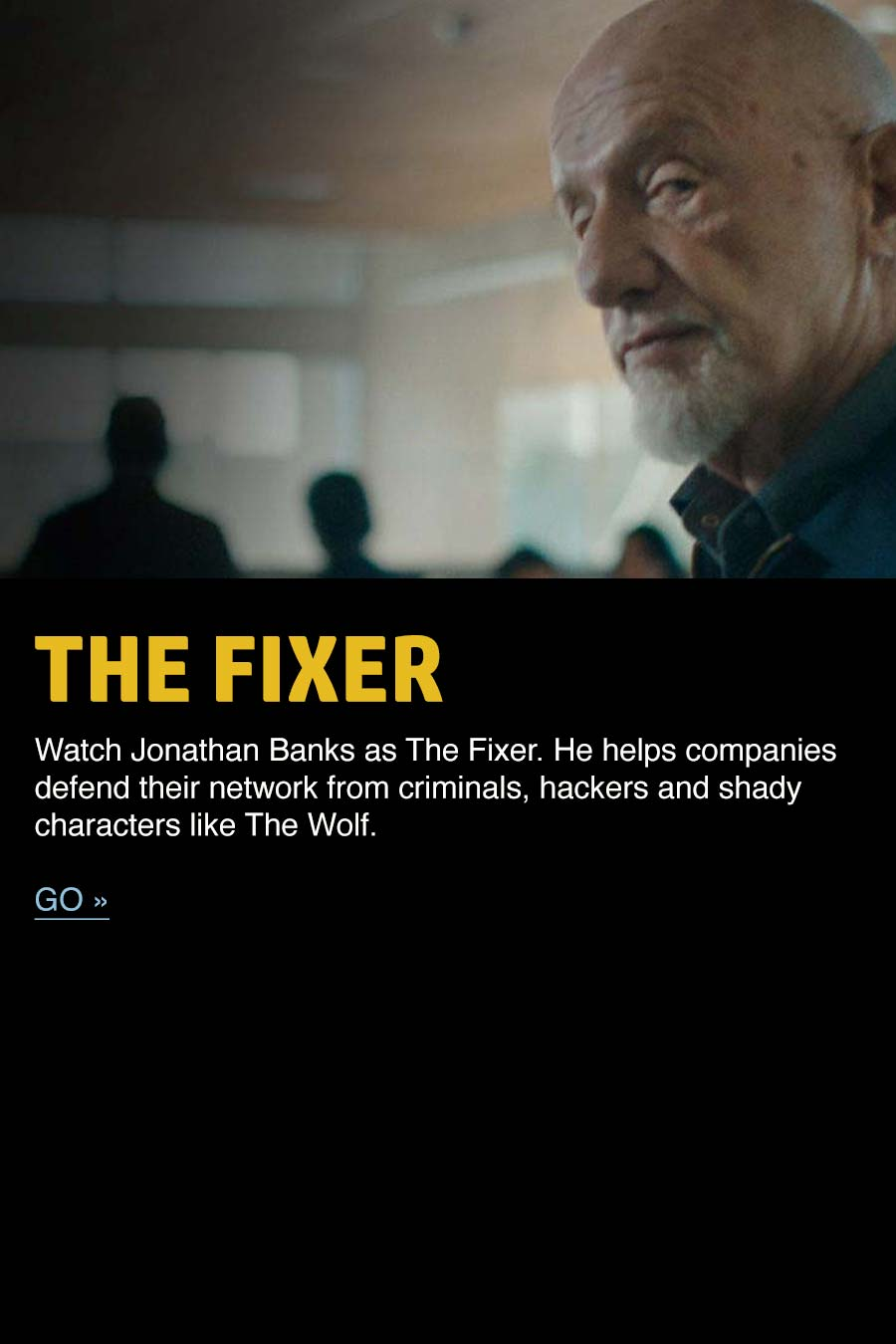 The Fixer, defend your network